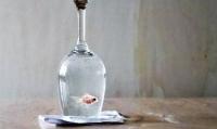 pesce_imprigionato_in_un_bicchiere_di_cristallo